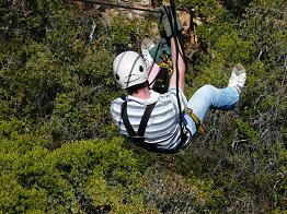 Avontuur: canopy Zuid Afrika