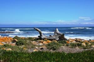 Zuid Afrika zee
