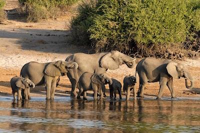 Reisverslag Zuid Afrika, Namibie en Botswana
